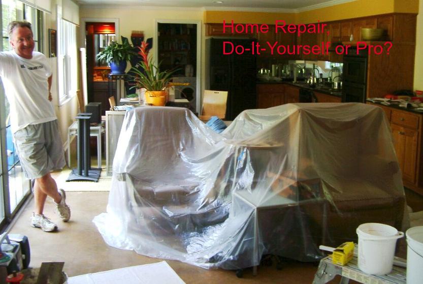 Repair, Pro or No